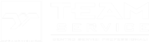 Logo Team Service